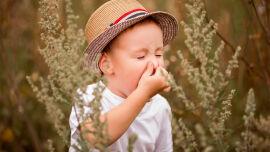 Allergisches Kind_Pollenallergie_shutterstock_1486756709 - Pollenallergien sind weit verbreitet.